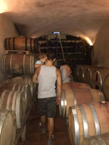 Barrels de Vino